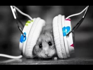 Почему нельзя слушать музыку в наушниках?
