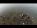 Декабрь , окунь , open water )))