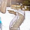 ZSS SNOWBOARD