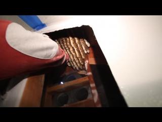 Парень проделал дырку в стене своего дома. то, что он там нашел, шокирует любого!