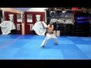 2015 10 18 Shihan Jesús Talán Shinkyokushin Seienchin Kata Shihan