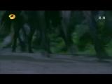 [LUNAS HUNTERS] Предание о легендарном мече Сюань Юаня 1/36