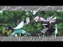 Sengoku Basara: Ultimate AMV