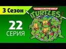 Черепашки ниндзя 3 сезон, 22 серия - Супер Рокстеди и могучий Бибоп