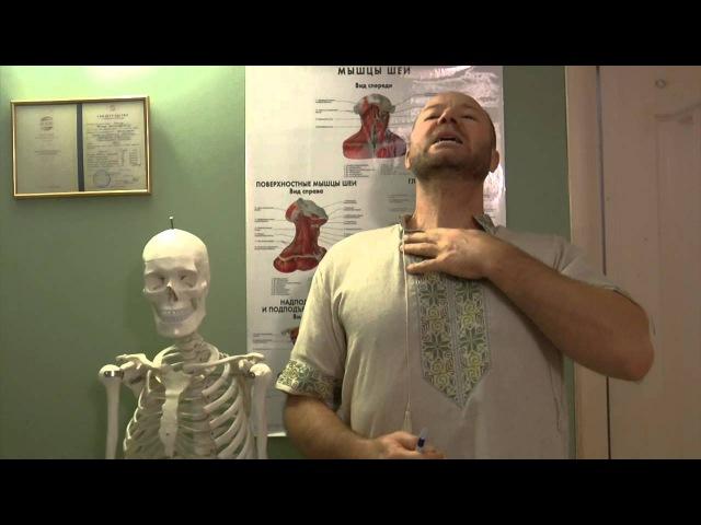 Почему немеют руки Спазм Лестничные мышцы. Скаленус синдром