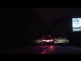 Билборды, спасающие животных на дорогах ночью