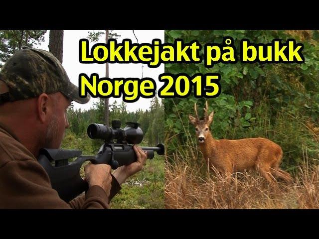 Lokkejakt på bukk i Norge 2015 av Kristoffer Clausen, Trailer
