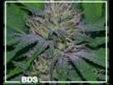 King Tubby - Badness Dub