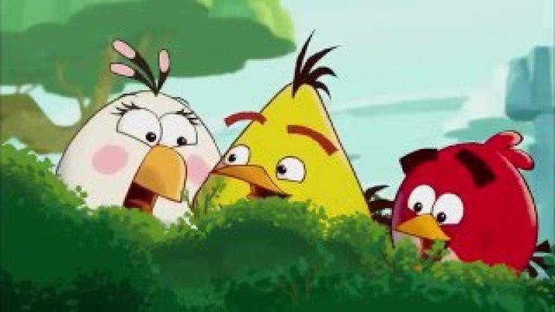 Angry Birds Toons (Злые птички) все серии подряд том 1