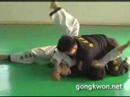 Gongkwon Yusul's Grand Master Kang-jun basic motions (Korean Martial Arts)