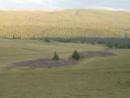 Пазырыкские курганы