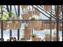 Sky garden havai bahçe