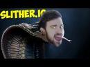ЗМЕЯ ПО КЛИЧКЕ ШЛАНГ - Slither.io