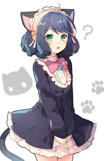 Котенок Снежок