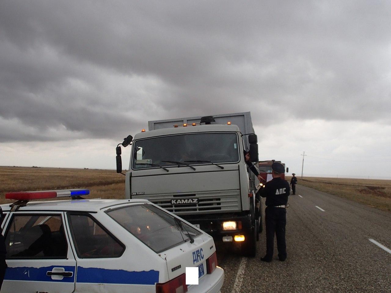 Крупный рогатый скот пытались незаконно вывезти из Ростовской области в республику Дагестан