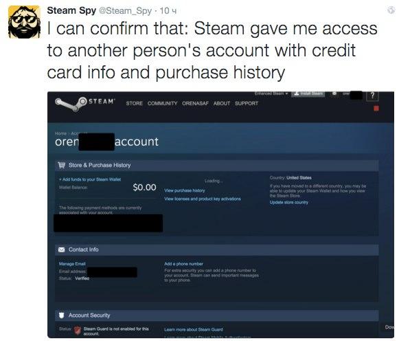 Steam`s bug