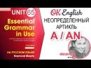 Unit 65 Неопределенный артикль a (an). Английский для начинающих