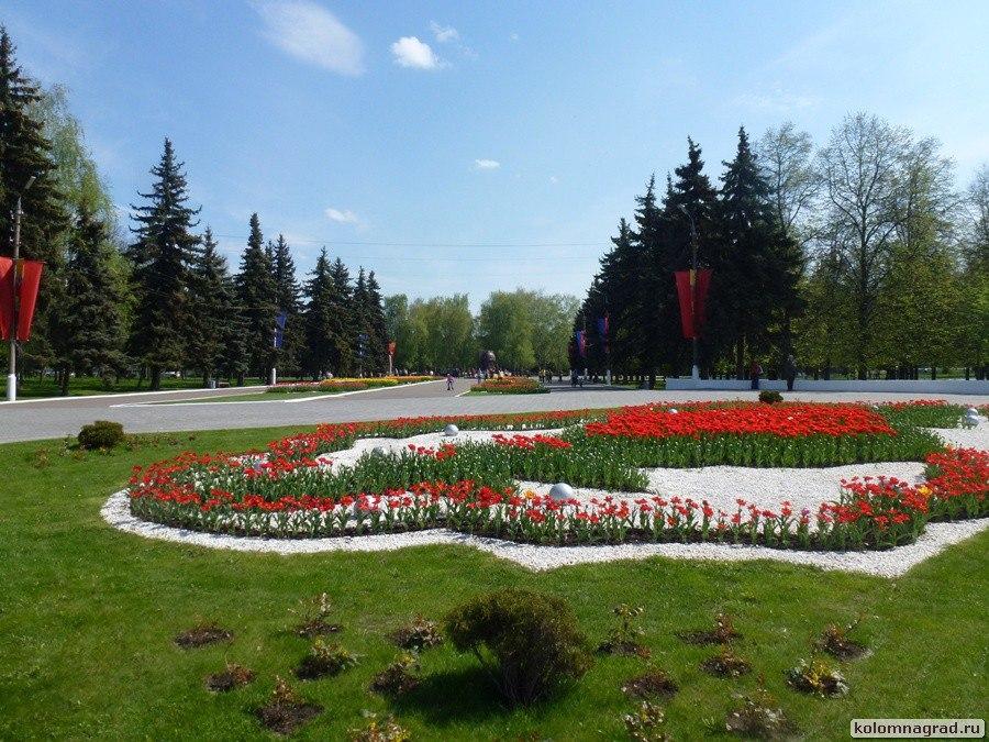 Вечный огонь тюльпанов – героям победителям!  (4 фото) Фото Коломна, Цветы фото Коломны День Победы 2016