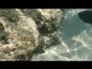 чистейшее красное море 2014 съемка на sony xperia zr