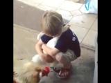 Мальчик и курица дружба на веки