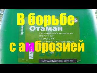 МТЗ 82.1 с гербицидом
