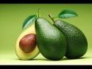 Косточки авокадо стоит ли выбрасывать противоопухолевое противогрибковое антиоксидантное и другие ц