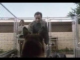 К-9 Собачья работа/K-9 (1989) Трейлер