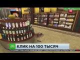 Клик на 100 тысяч_ с карты списали деньги за разбитый виртуальный стеллаж