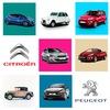 Авто Премиум: Peugeot и Citroen в Петербурге