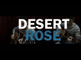 Desert Rose - Sting & Cheb Mami - Guitar cover