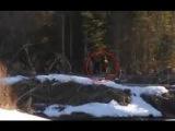 Реальность или фантастика Снежный человек из России National Geographic