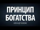 Принцип богатства Александр Палиенко