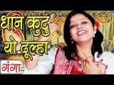 New Maithili Hit Song 2015 | Dhan Kutu Dulha | Maithili Vivah Geet 2015 |