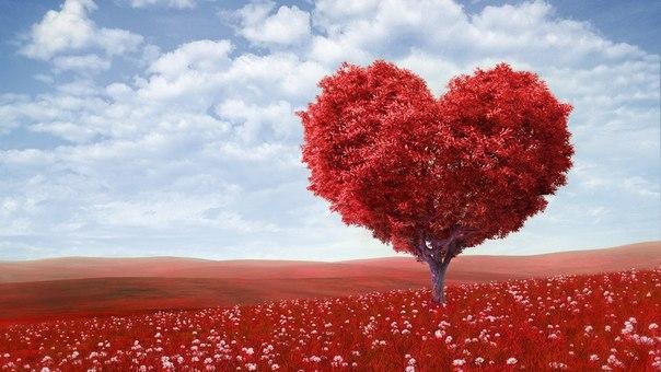 Три ступени любви: земная любовь, Божественная любовь, Абсолютная любовь