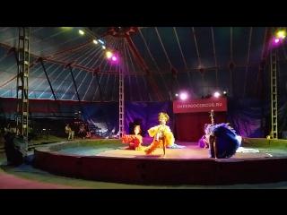 шоу-балет Антре на арене цирка с Московскими артистами 2016