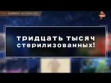Тайны Чапман - Болезни, которых нет / 28.06.2016
