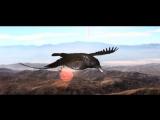 Cildren of Bodom - Morrigan
