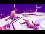 UFC: Хабиб