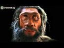 Наглядная эволюция от обезьяны к человеку