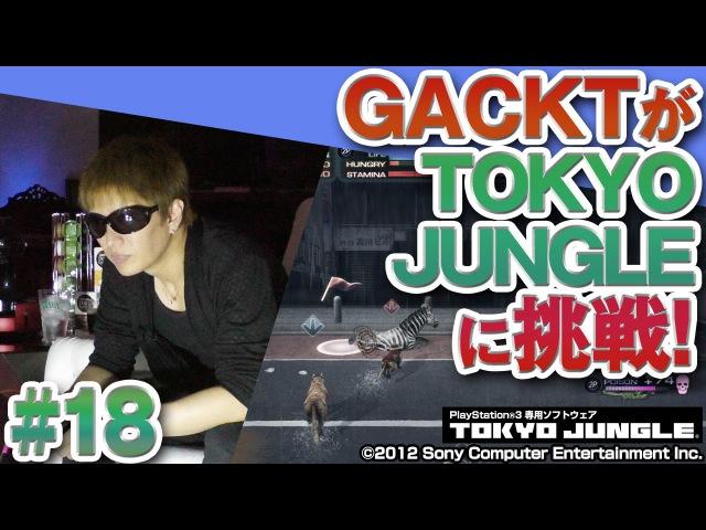 目指せ100年生存! GACKT × TOKYO JUNGLE 18【ネスレプレゼンツ GACKTなゲーム!? 帰ってきたガ12