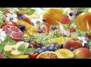 Среда обитания Продукты вечной молодости (23.11.2011)