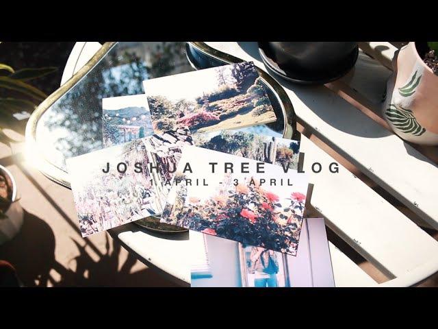 VLOG || Joshua Tree Brewery Artwalk