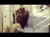 Жирная крыса залезла на заснувшего пассажира метро в Нью-Йорке