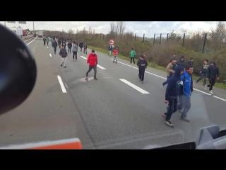 Венгерский дальнобойщик и иммигранты