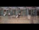 GUSTAV MAHLER-Film MORT A VENISE-MORTE A VENEZIA-DEATH IN VENICE-Luchino VISCONTI-(1971) - YouTube_0_1458520452396