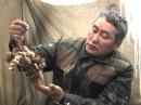 32 выпуск телепрограммы Охота и рыбалка в Якутии. Охота на медведя.Эфир 08.02.10