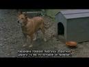 Vale Abraão (1993) - Долина Авраама (с русскими субтитрами) - часть 1