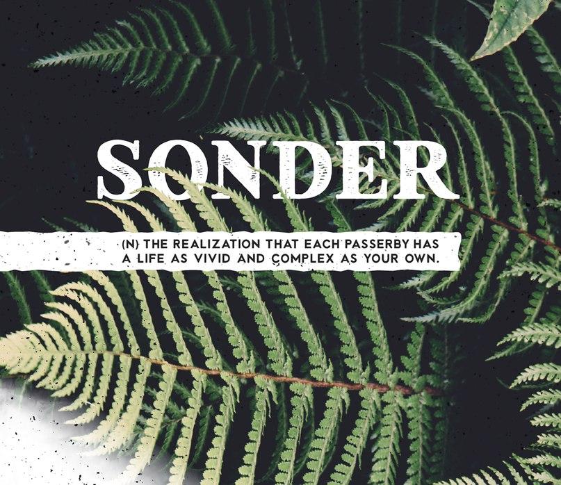 Download Sonder font (typeface)