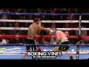 Canelo (Boxing Vines) l boxingvines