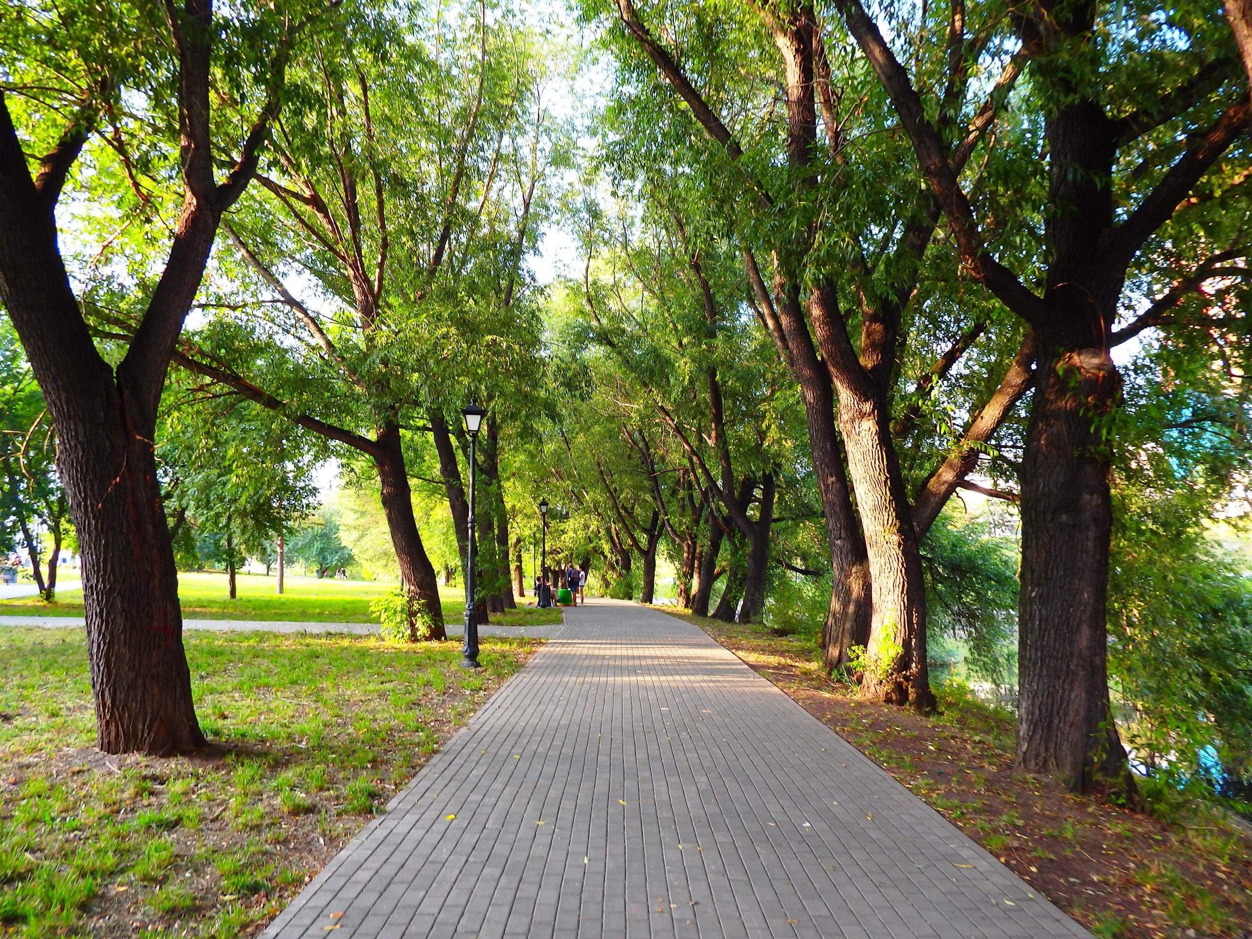 вот ходил парки в екатеринбурге адреса фото сих пор является